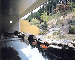 東山温泉 メイプルプラザ ゆーゆ 温泉施設・日帰り温泉などの情報満載!
