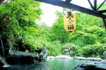 タヌキのお宿 洞元荘 温泉施設・日帰り温泉などの情報満載!【ゆーゆ】