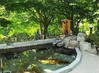秘湯の宿 滝見苑【日帰り】 温泉施設・日帰り温泉などの情報満載!【ゆーゆ】