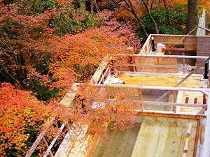 楽遊壽林 自然館 三段の桧露天風呂