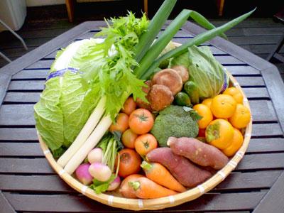四季菜市場イメージ