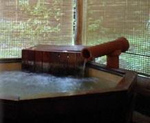 いちのみや温泉 楽だの湯 ゆーゆ 温泉施設・日帰り温泉などの情報満載!