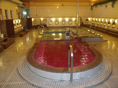 みなと花の湯 ゆーゆ 温泉施設・日帰り温泉などの情報満載!