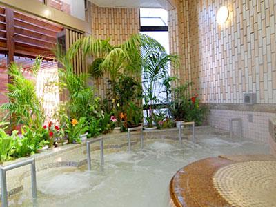 湯~モアリゾート 太山寺温泉なでしこの湯 ジェットバス