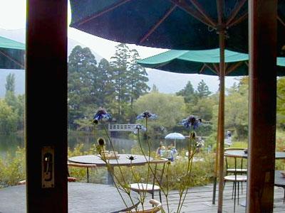 金鱗湖畔のカフェ