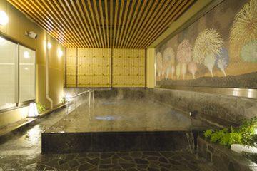 新宿天然温泉テルマー湯 ゆーゆ 温泉施設・日帰り温泉などの情報満載!