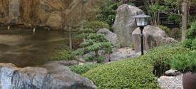 こうの湯温泉【宿泊】 ゆーゆ 温泉施設・日帰り温泉などの情報満載!