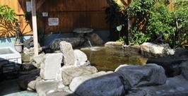 大川温泉 貴肌美人 緑の湯 温泉施設・日帰り温泉などの情報満載!【ゆーゆ】