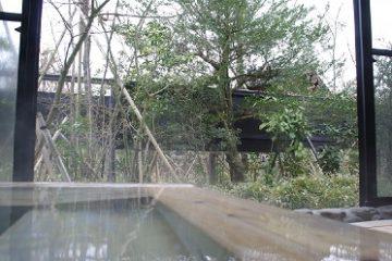 亀山の湯【宿泊】 温泉施設・日帰り温泉などの情報満載!【ゆーゆ】