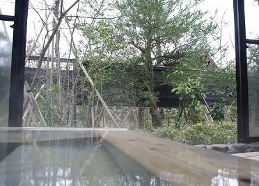 亀山の湯【宿泊】 ゆーゆ 温泉施設・日帰り温泉などの情報満載!