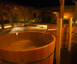 天然温泉 多気の湯