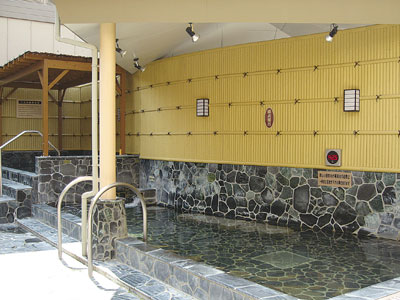 天然温泉露天風呂と美肌の湯 宮の湯