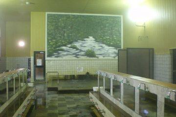 おおびらき温泉 温泉施設・日帰り温泉などの情報満載!【ゆーゆ】