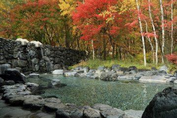 アルザ尾瀬の郷 温泉施設・日帰り温泉などの情報満載!【ゆーゆ】