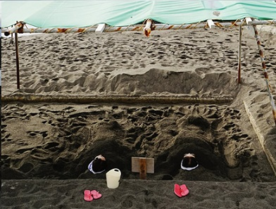 ヘルシーランド砂むし温泉「砂湯里」 ゆーゆ 温泉施設・日帰り温泉などの情報満載!