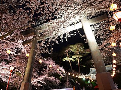 鬼怒川温泉夜桜大宴会